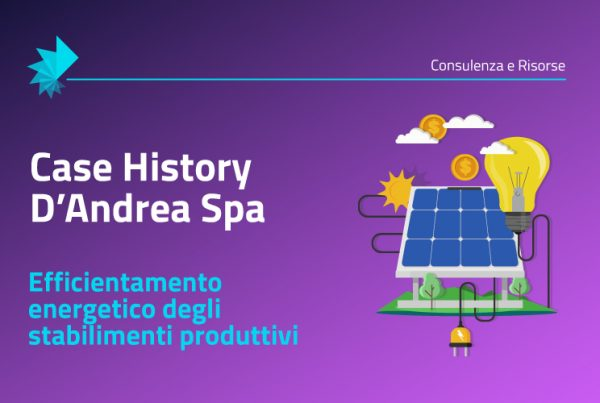 Case History D'Andrea Spa